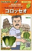 【ラットゥーガ・ロマーナ】コロッセオ 小袋(80粒)(トキタ種苗)