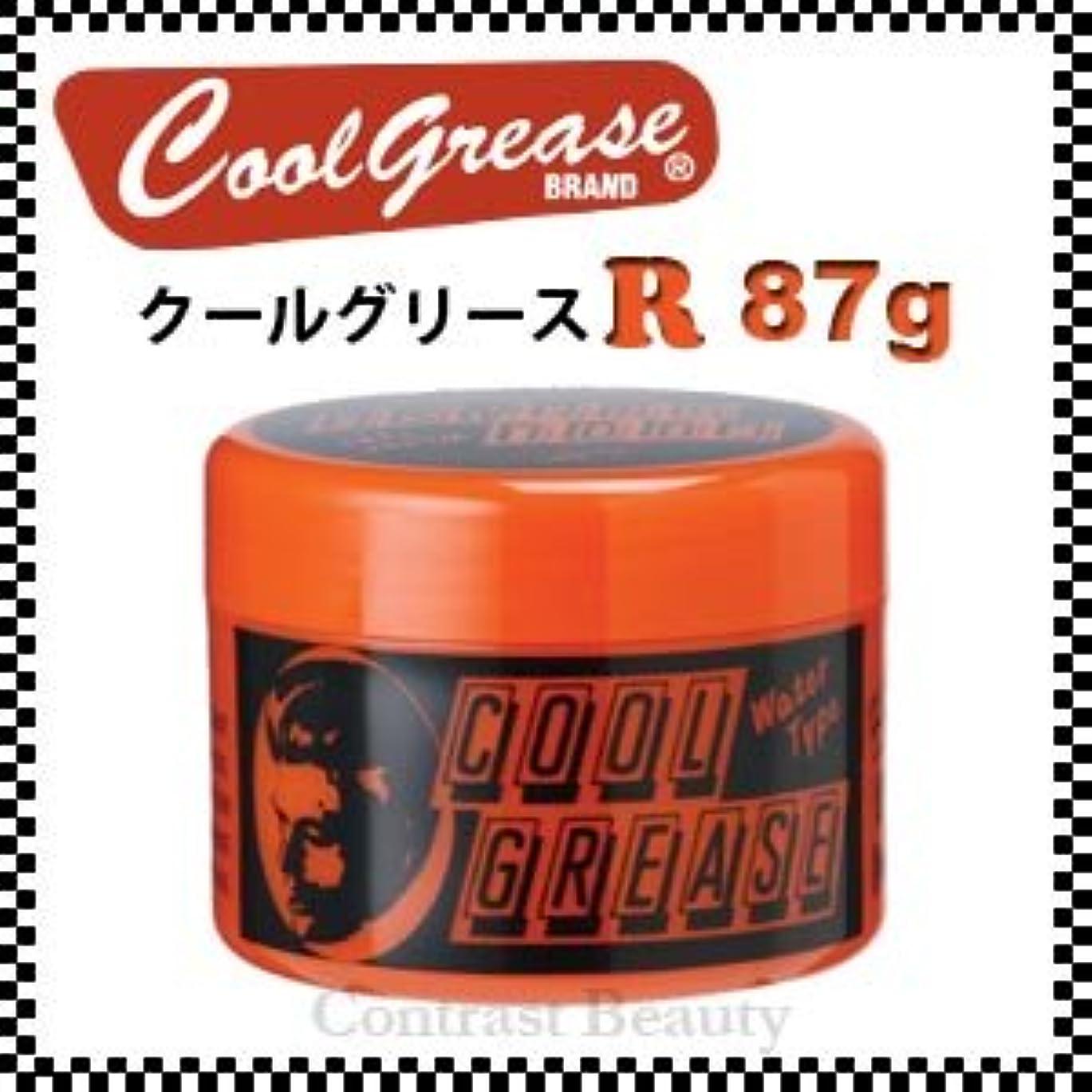 守るより平らな嵐の【X5個セット】 阪本高生堂 クールグリース R 87g
