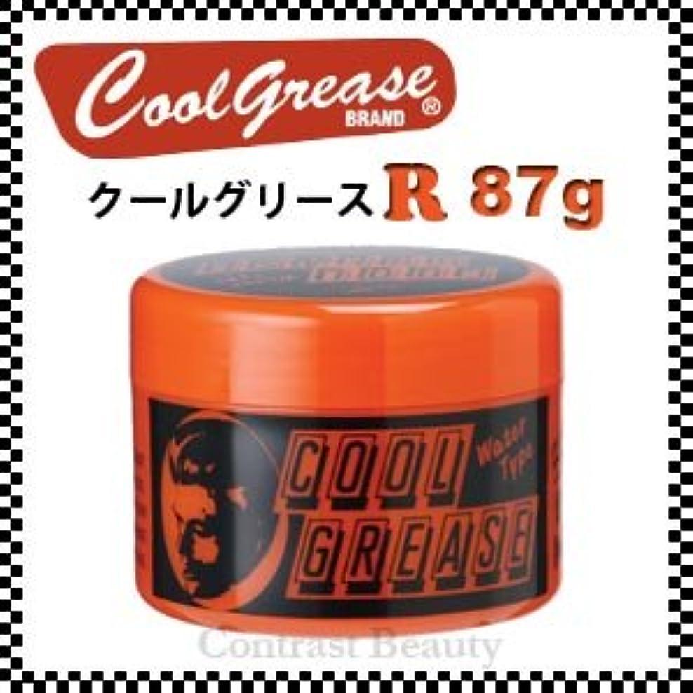 伝説芸術的誠実さ【X3個セット】 阪本高生堂 クールグリース R 87g