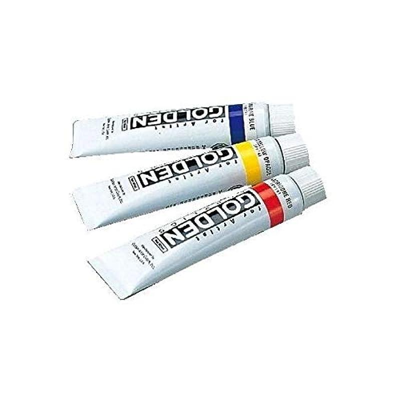 喜ぶ天皇ポジティブターナー色彩 アクリル絵具 ゴールデンアクリリックス バーントアンバーライト GL060114 60ml