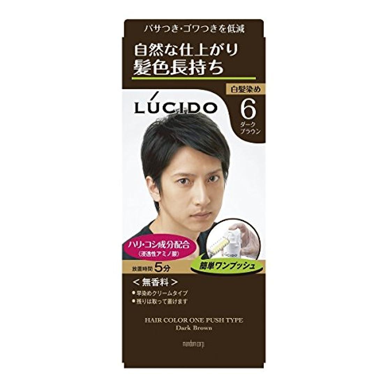 【マンダム】ルシード ワンプッシュケアカラー 6 ダークブラウン 1剤50g?2剤50g ×10個セット