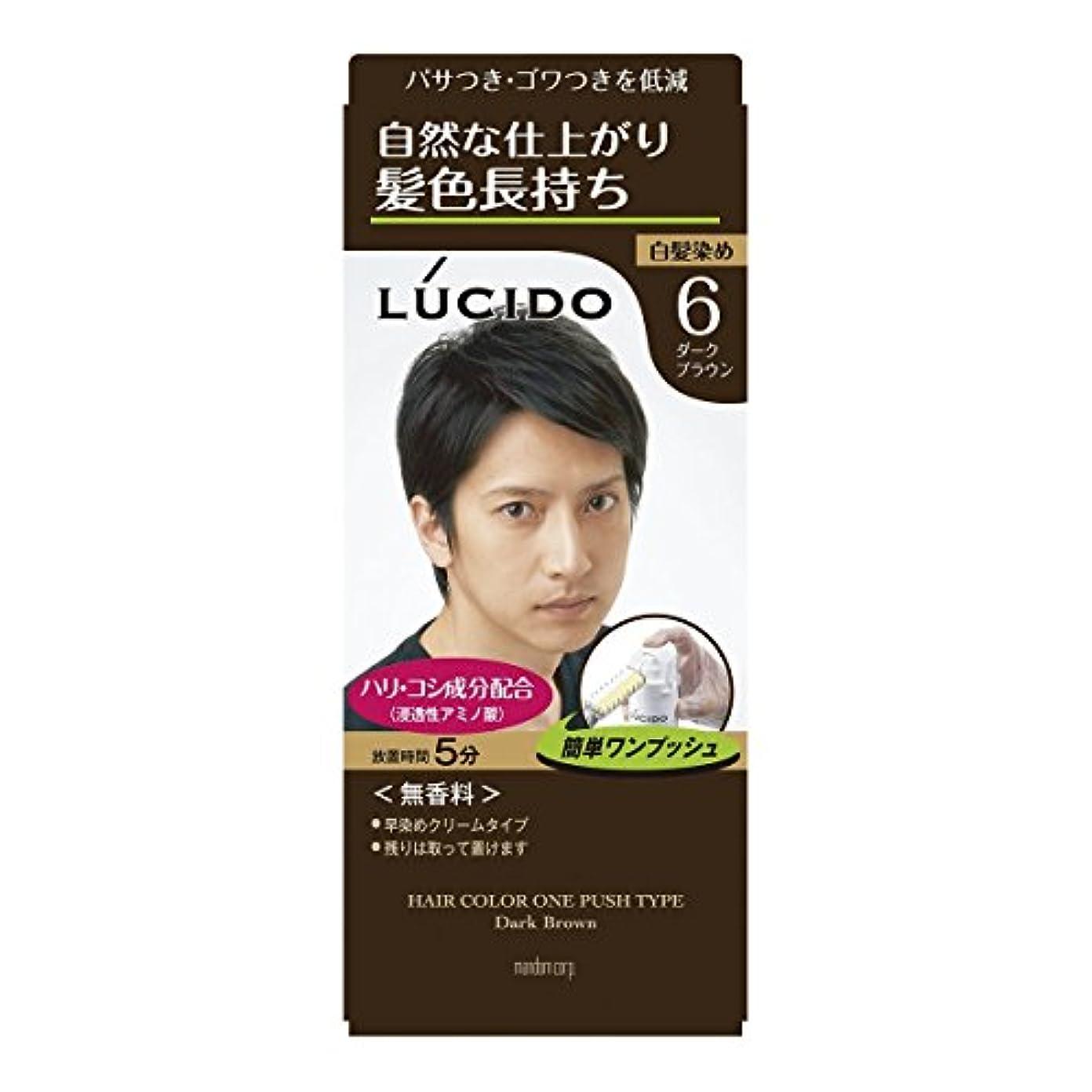 【マンダム】ルシード ワンプッシュケアカラー 6 ダークブラウン 1剤50g?2剤50g ×5個セット