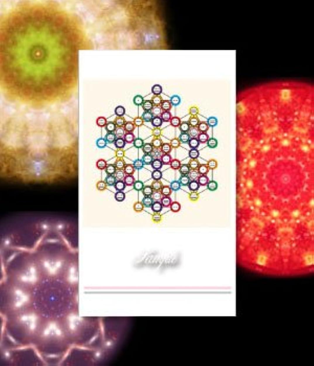 魅力的スプーン電気陽性クスリエ ツォルキン 名刺サイズカード