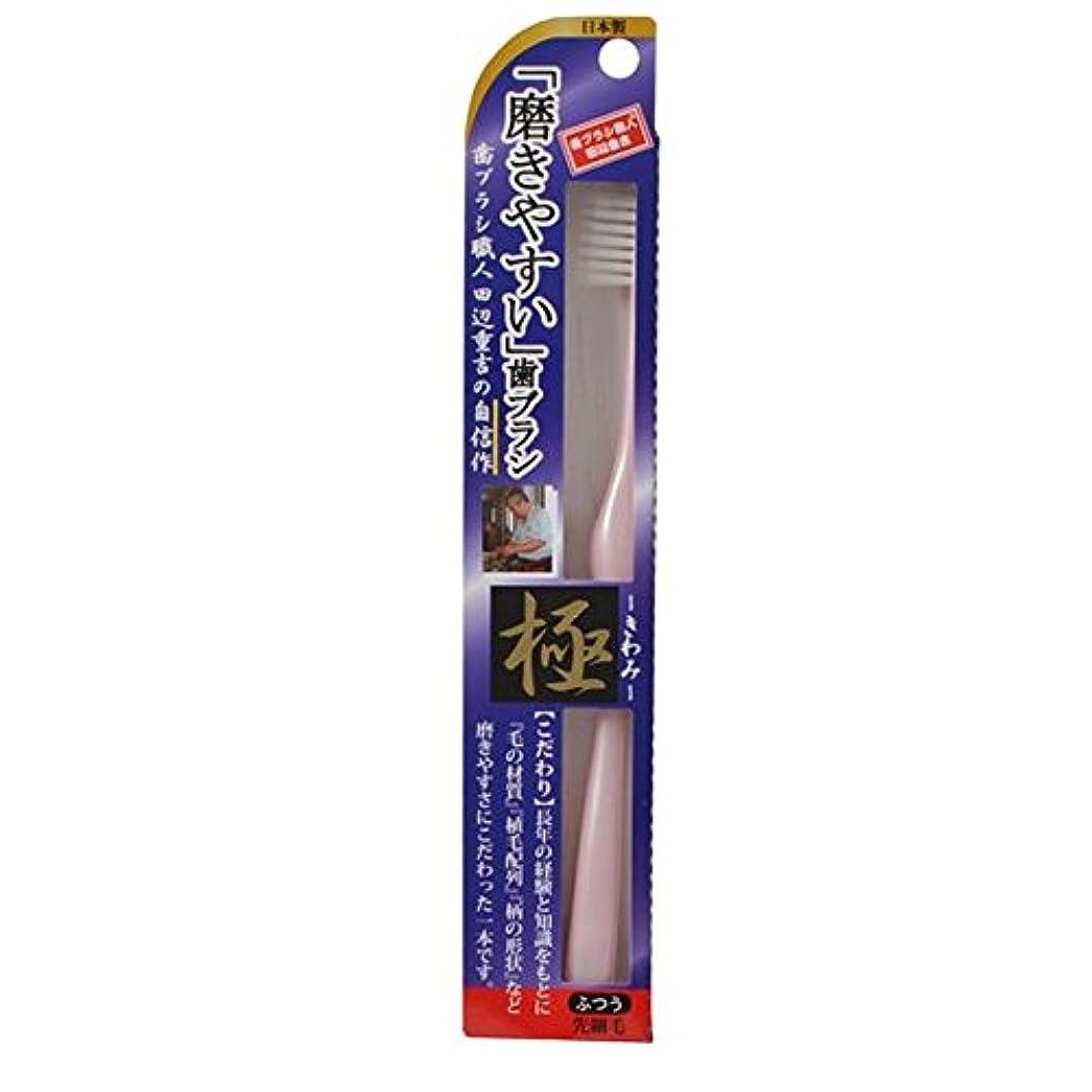 虫を数える宿方言磨きやすい歯ブラシ極 LT-22