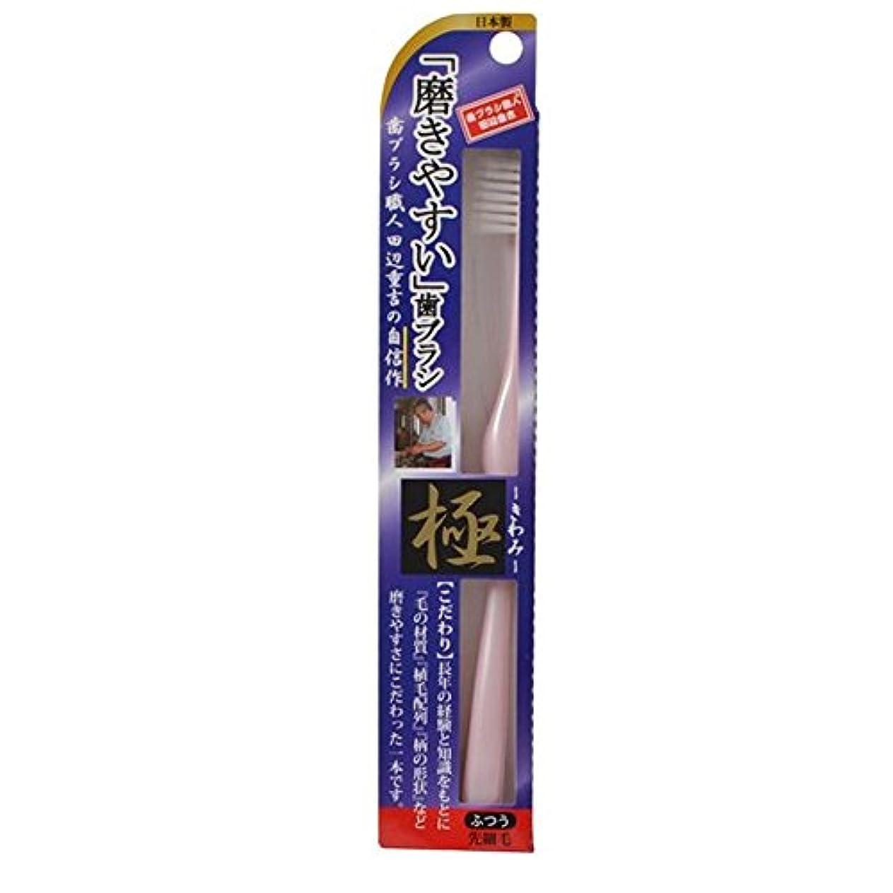同盟動脈線形磨きやすい歯ブラシ極 LT-22