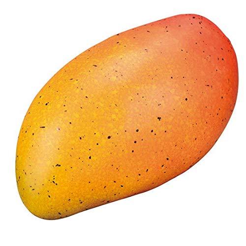 食品サンプル マンゴー