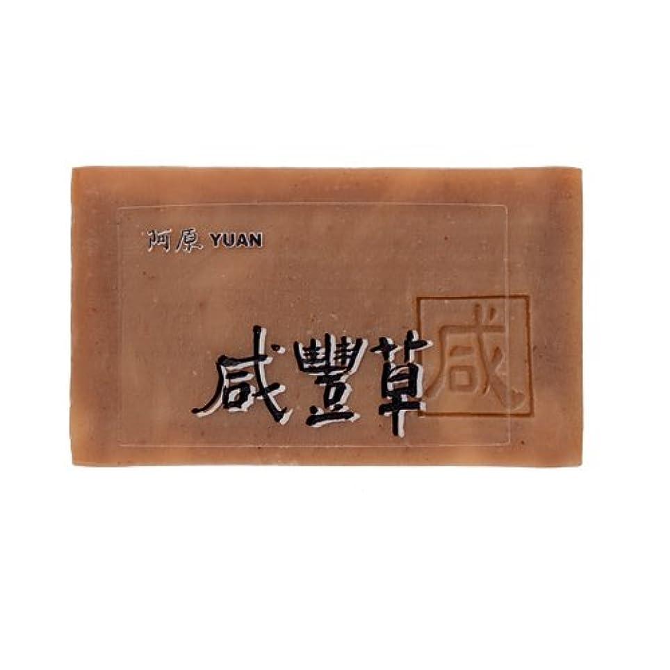 むき出しネックレスランプユアン(YUAN) ユアンソープ コシロノセンダングサソープ 100g (阿原 石けん 台湾コスメ)