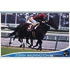 2012オーナーズホース03◆ノーマル/白◆エイシンワシントンOH03-H062≪OWNERS HORSE03≫