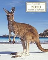 2020: Weekly and Monthly Planner/Calendar Jan 2020 – Dec 2020 Kangaroo