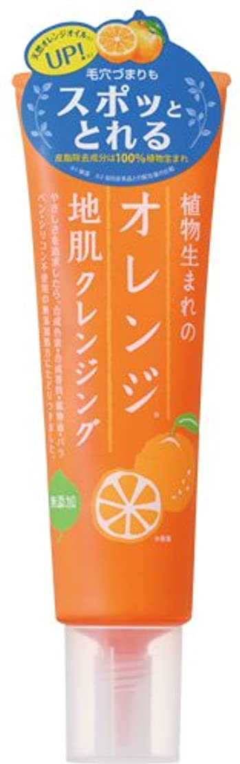 展示会策定するディスコ植物生まれのオレンジ地肌クレンジングN