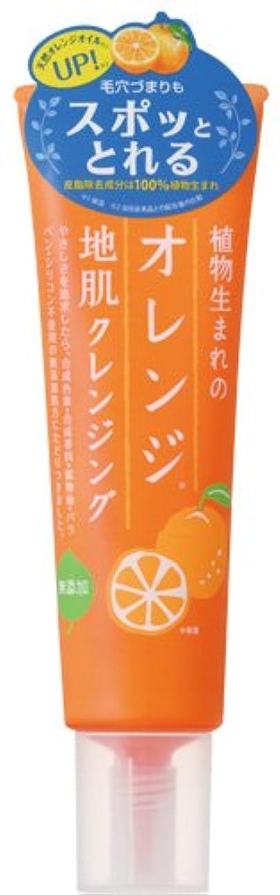 クラックポット評価するコンサルタント植物生まれのオレンジ地肌クレンジングN