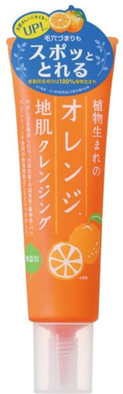 本体シンプルな弾薬植物生まれのオレンジ地肌クレンジングN
