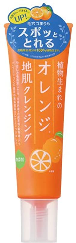 着陸朝食を食べる強制的植物生まれのオレンジ地肌クレンジングN