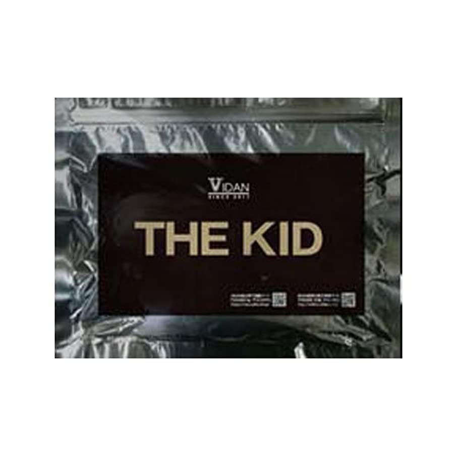 登録地下鉄会計:ビダンザキッド VIDAN THE KID 20枚入り