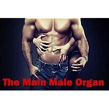 The Main Male Organ
