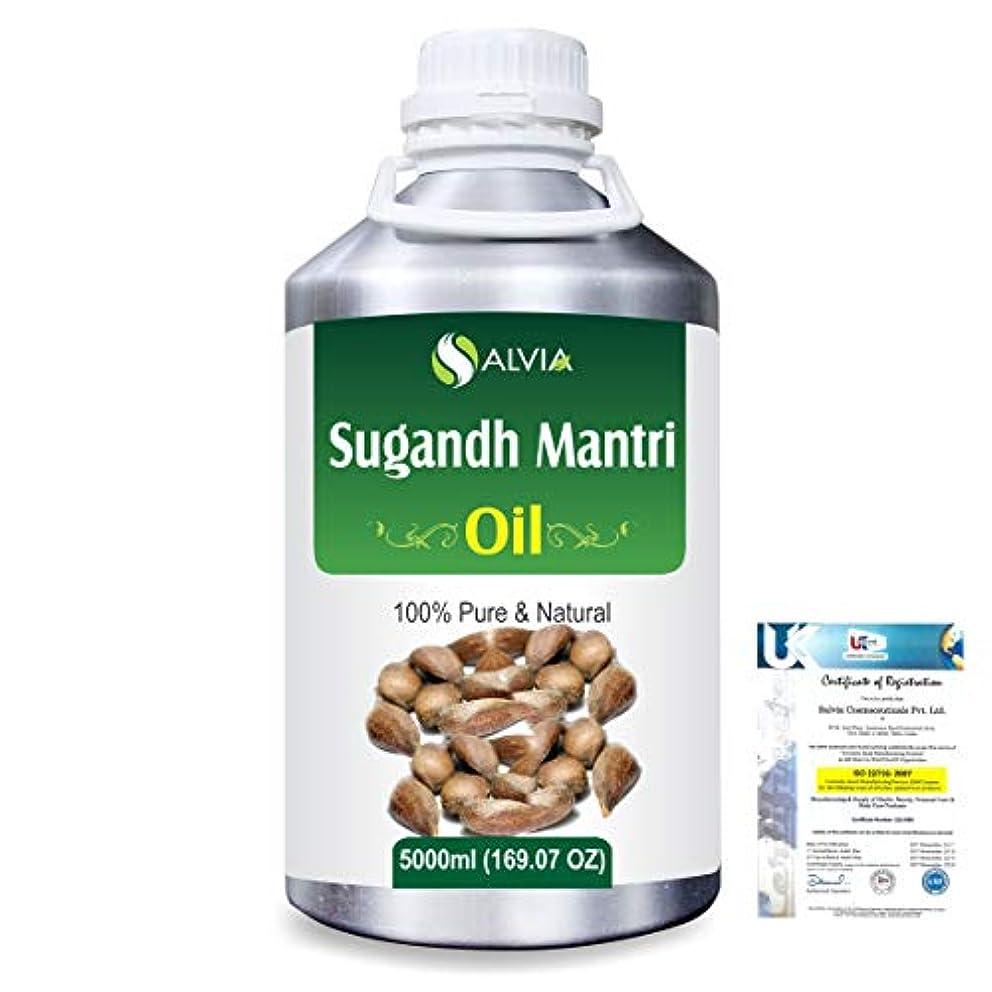 太陽ランチ滑りやすいSugandh Mantri (Homalomena aromatic) 100% Natural Pure Essential Oil 5000ml/169fl.oz.