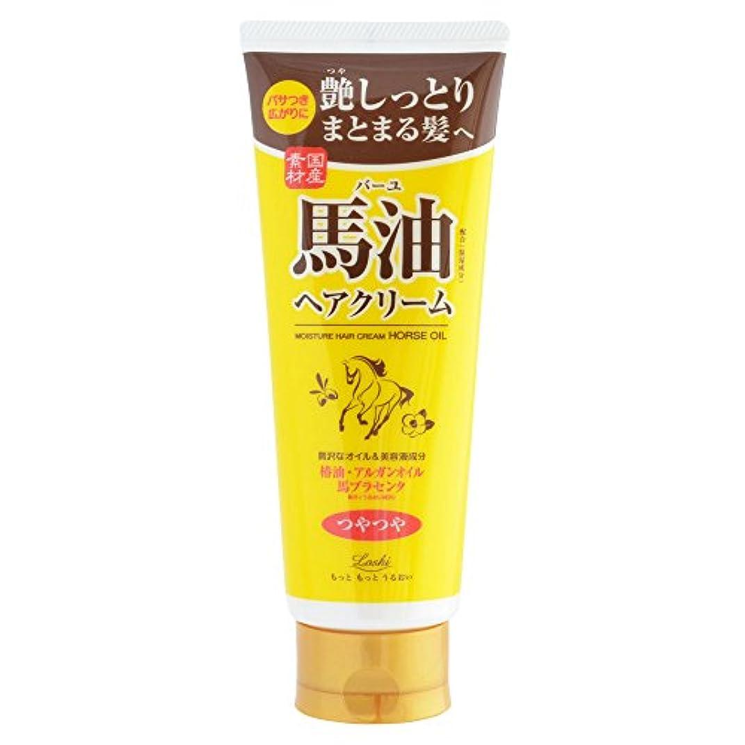犬年金汚れるロッシモイストエイド オイルヘアクリーム 馬油ヘアクリーム ヘアオイル 160g