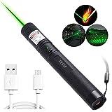 DFSSF USB Charging Green Light Pointer Torch, Demonstration Projector Pen, Handheld Flashlight for Camping Biking Hiking Outdoor.