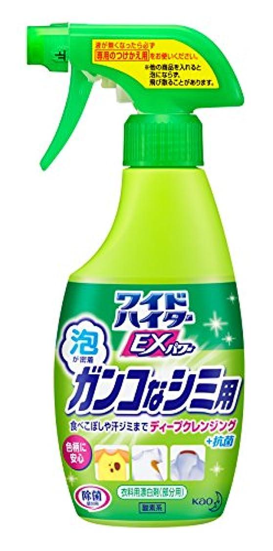 無視れる派生するワイドハイターEXパワー 衣料用漂白剤 ポイント漂白  ガンコなシミ用 本体 300ml