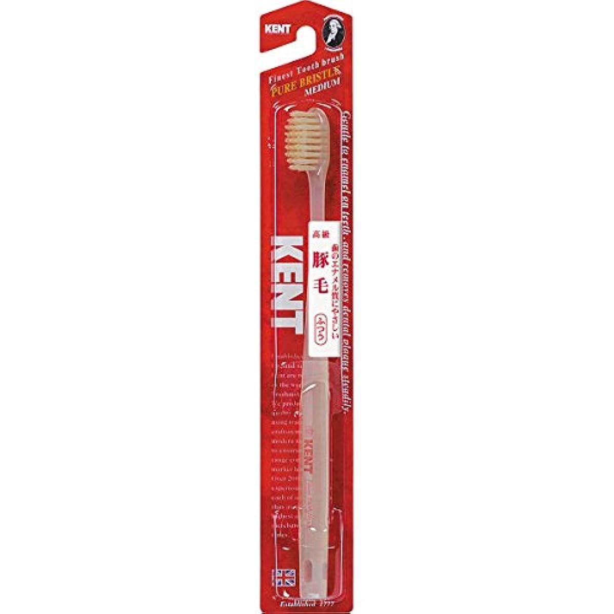 断線読みやすいスーパーマーケットKENTケント 豚毛歯ブラシ 毛の硬さ:ふつう KNT-1233 6本セット
