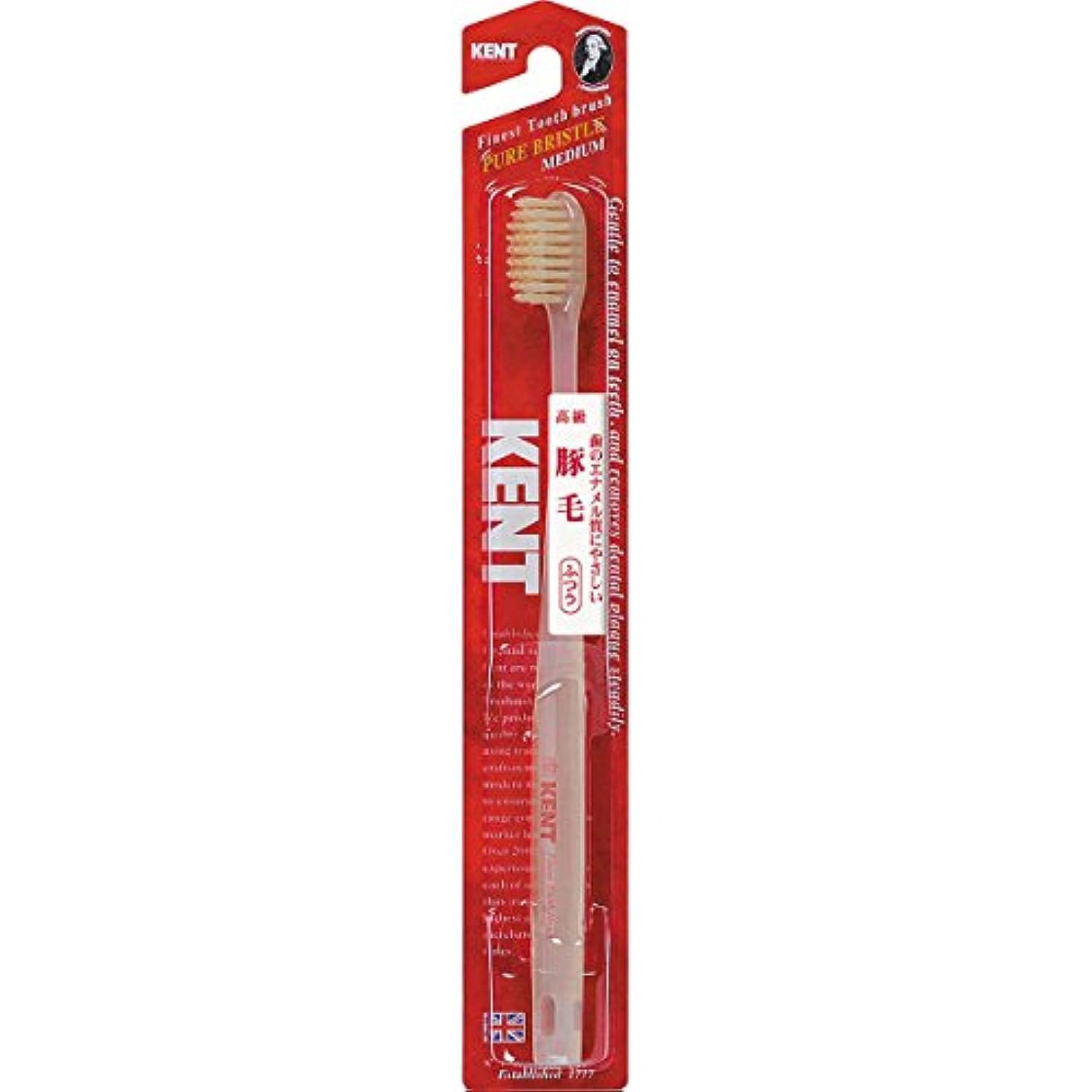 クレデンシャルエイズ機械KENTケント 豚毛歯ブラシ 毛の硬さ:ふつう KNT-1233 6本セット