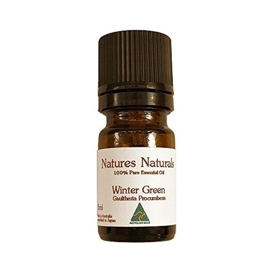 穏やかな鼻変形するウィンターグリーン エッセンシャルオイル 100% 精油 5ml