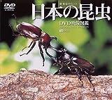 日本の昆虫 DVD映像図鑑