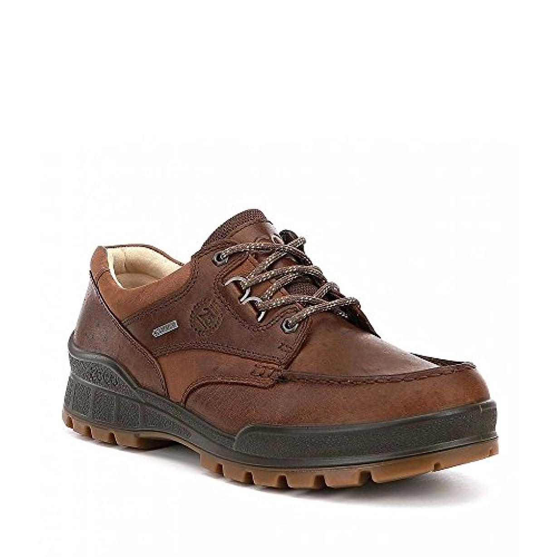 寂しい特定のアミューズ(エコー) ECCO メンズ シューズ?靴 革靴?ビジネスシューズ Track 25 Anniversary Waterproof Oxfords [並行輸入品]