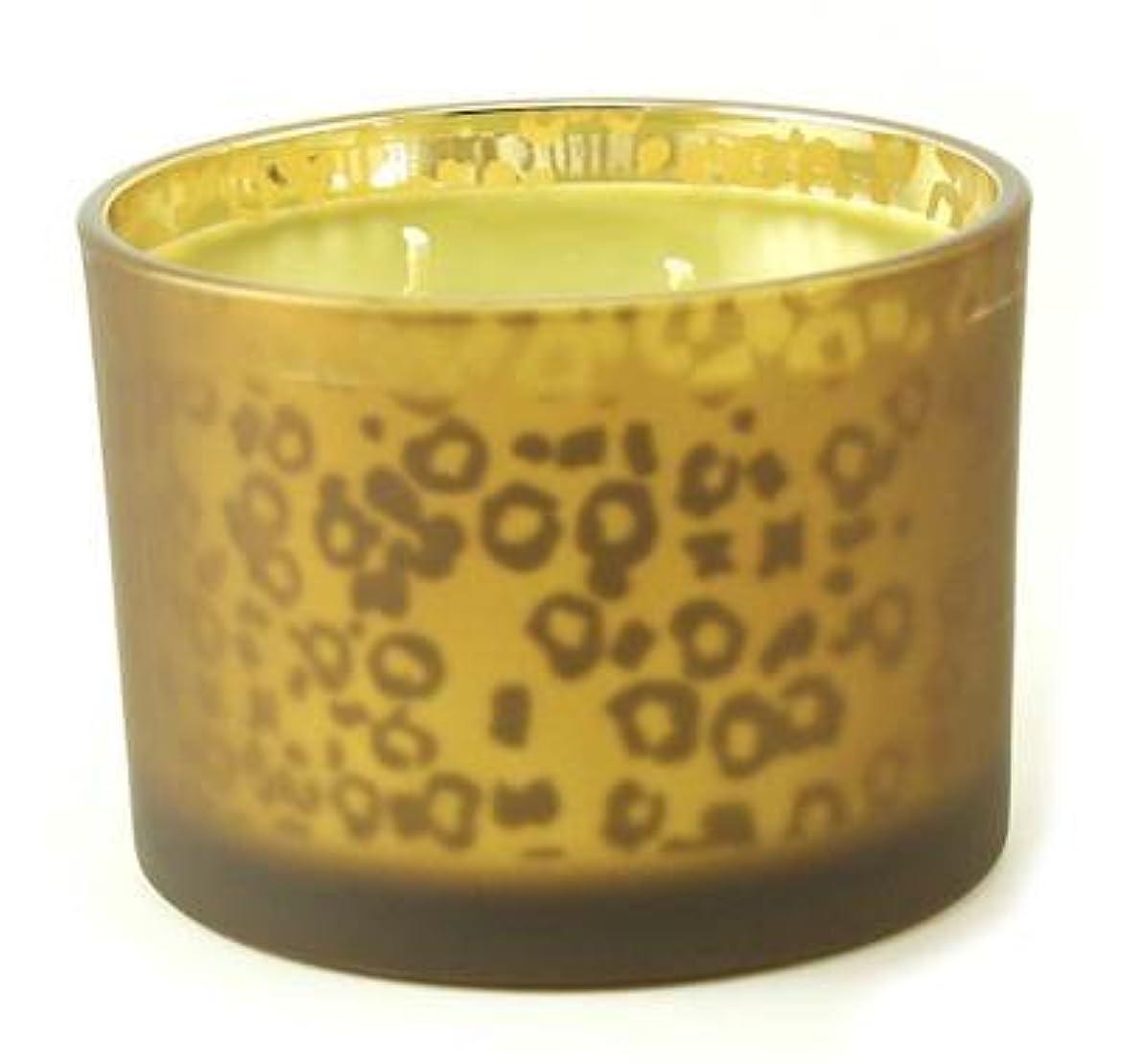 費用レジ自分のオレンジバニラTyler Stature Muted Leopard 16オンス香りつきJar Candle