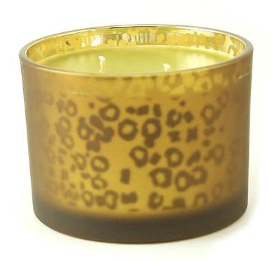 測定可能改善ぜいたくオレンジバニラTyler Stature Muted Leopard 16オンス香りつきJar Candle