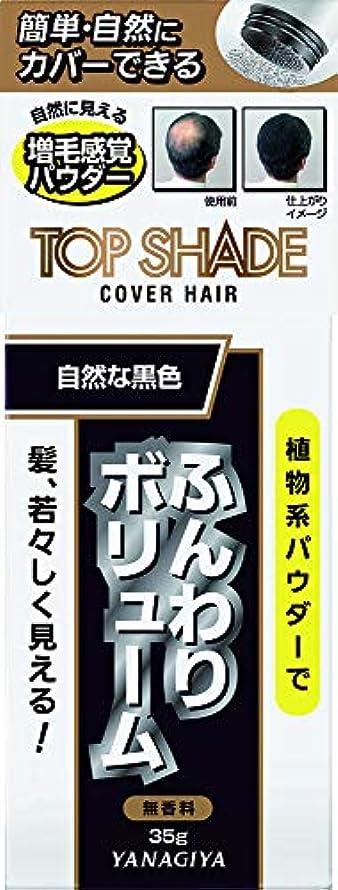 穏やかな国内の引退したトップシェード カバーヘアー (自然な黒色)