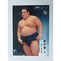 BBM2015大相撲カード「レジェンド」至宝■レギュラーカード■39関脇/若の里