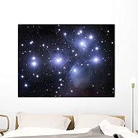 Pleiades Wall Mural by Wallmonkeys Peel and Stick Graphic (48 in W x 36 in H) WM83150 [並行輸入品]
