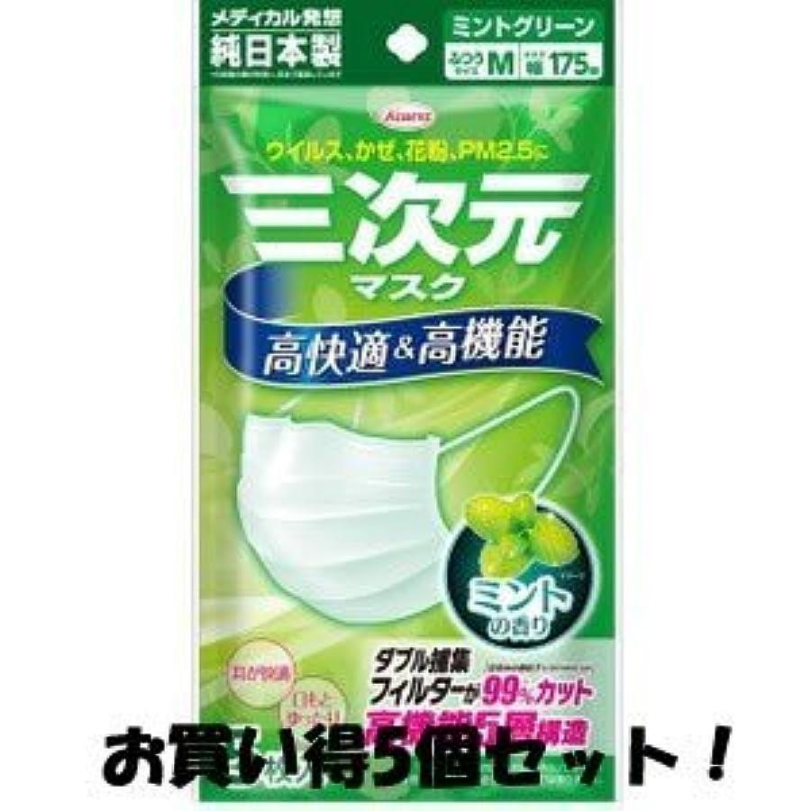 チーフ戦艦事(興和新薬)三次元マスク ミントの香り グリーン ふつうMサイズ 5枚入(お買い得5個セット)