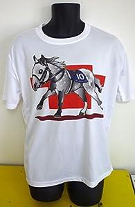 ポリエステル100% 紳士用サイズの  速乾Tシャツになります  サイズ:M・Lありますので注文の際指示くださいませ