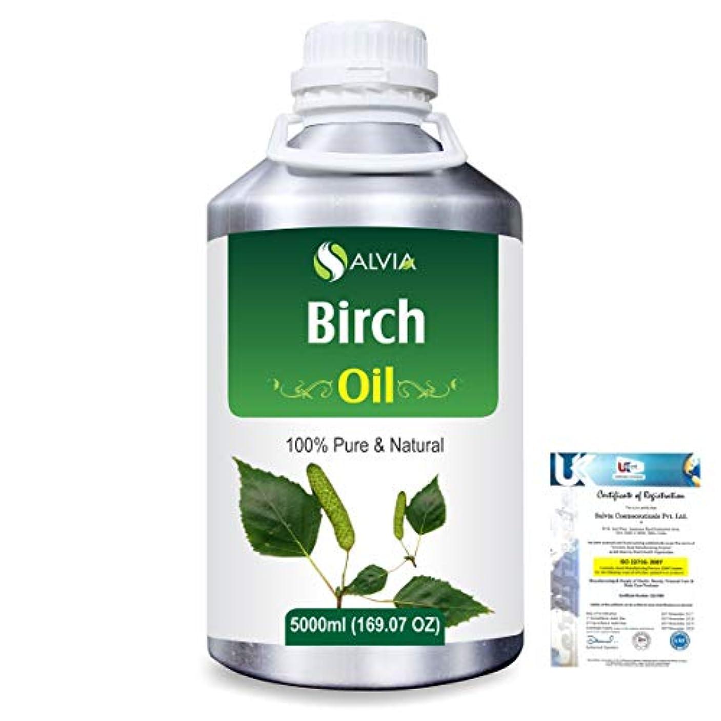 疑わしい騒怒るBirch (Betula Pendula,Betula Alba) 100% Natural Pure Essential Oil 5000ml/169fl.oz.