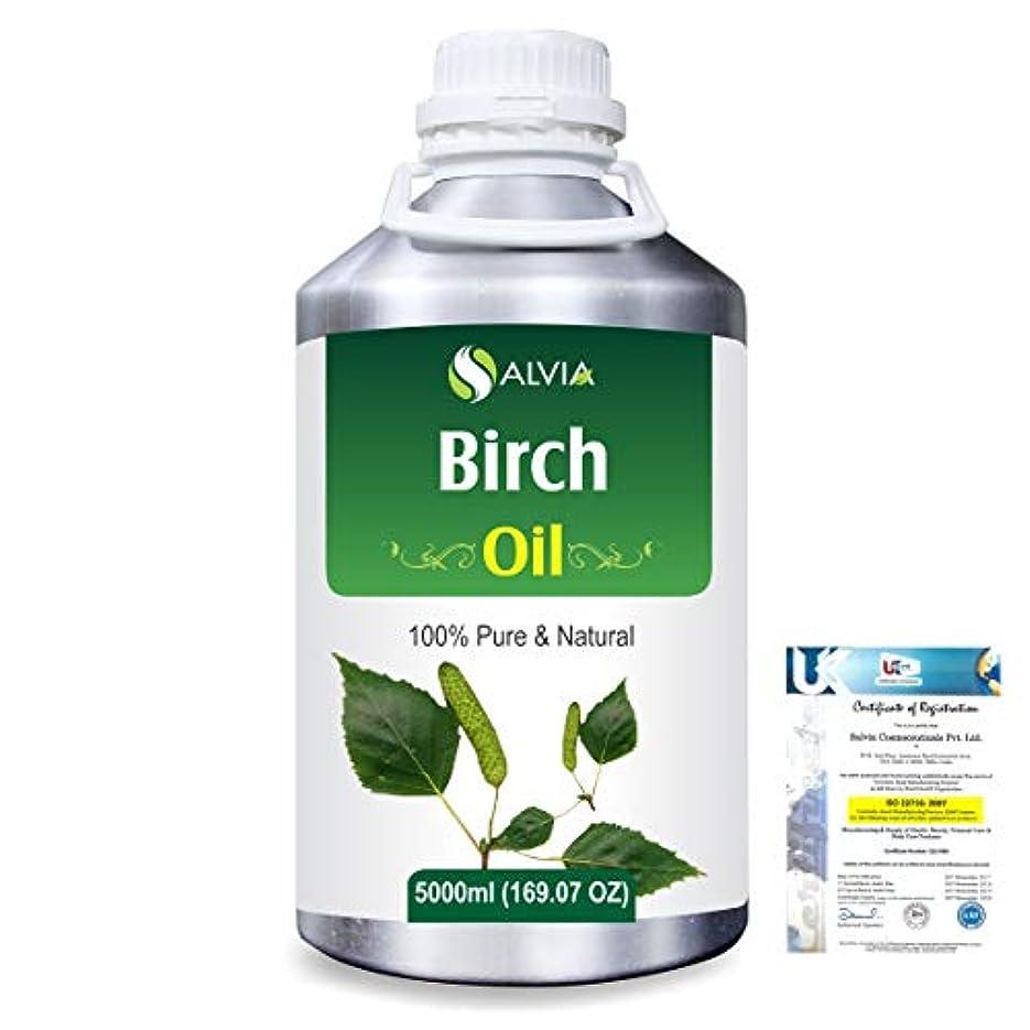 名誉海洋シャッターBirch (Betula Pendula,Betula Alba) 100% Natural Pure Essential Oil 5000ml/169fl.oz.
