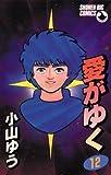 愛がゆく 12 (少年ビッグコミックス)