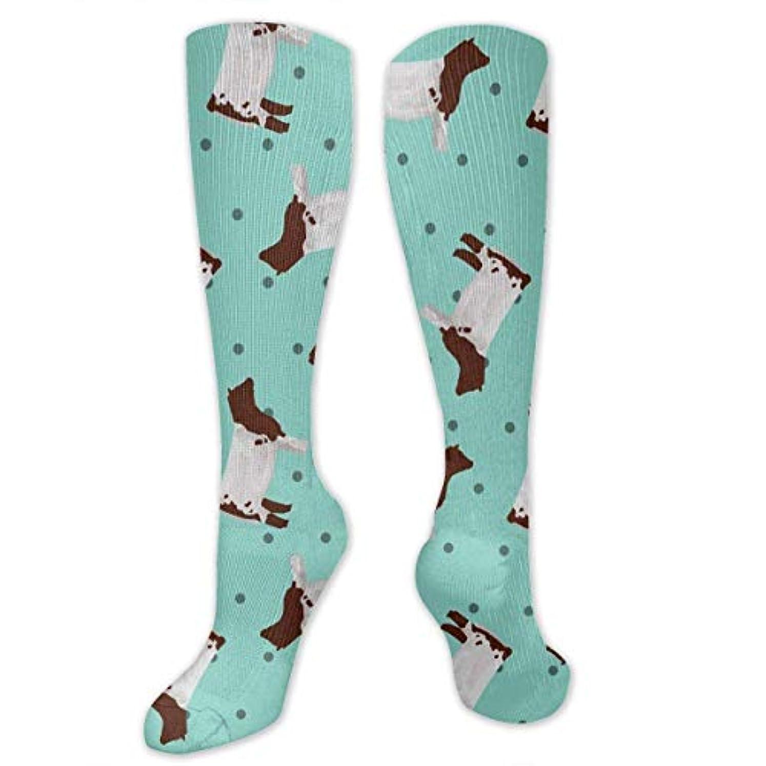 スタジオウェブリビングルーム靴下,ストッキング,野生のジョーカー,実際,秋の本質,冬必須,サマーウェア&RBXAA Polka Dot Shorthorn Steer Socks Women's Winter Cotton Long Tube Socks...