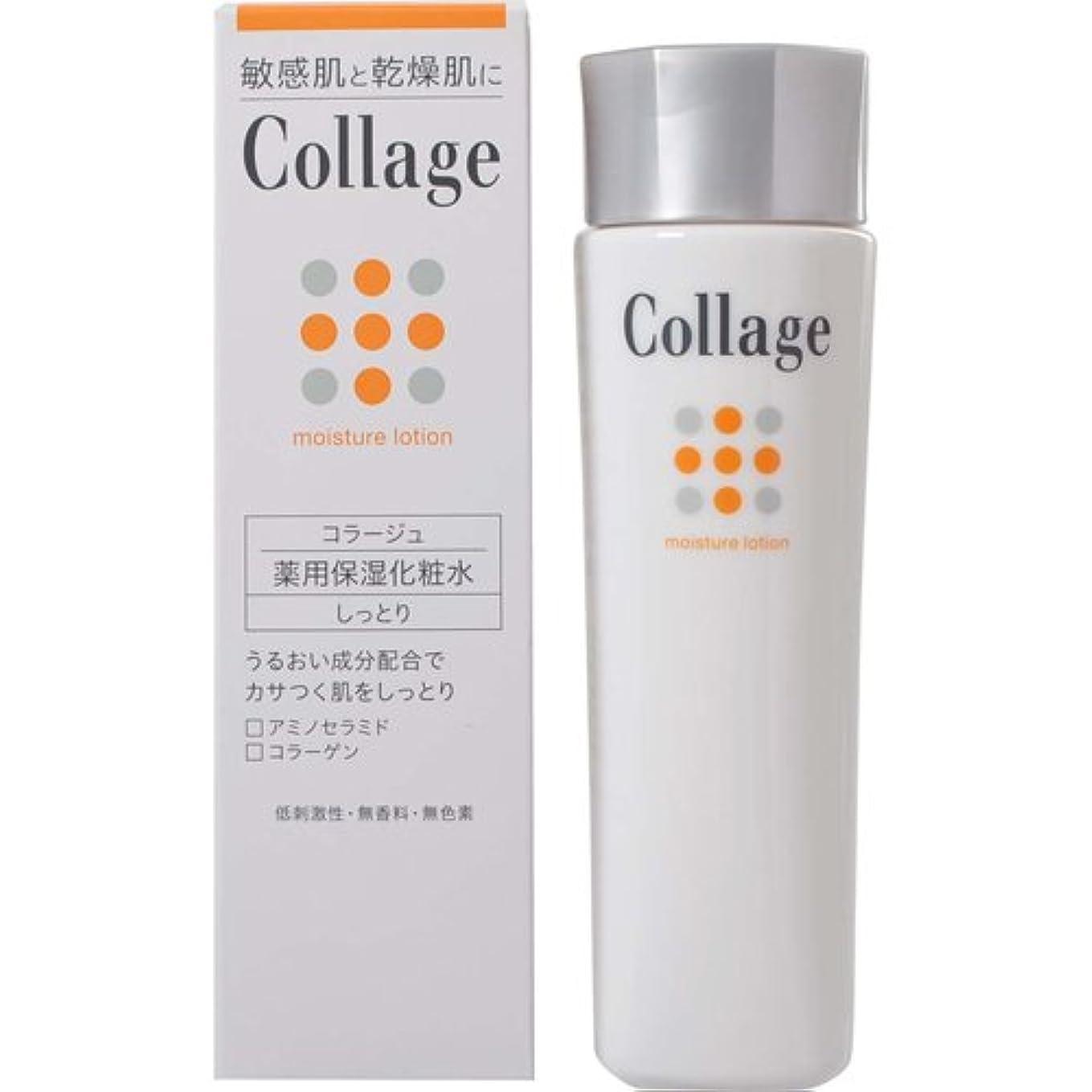不実掃除別のコラージュ 薬用保湿化粧水 しっとり 120mL 【医薬部外品】