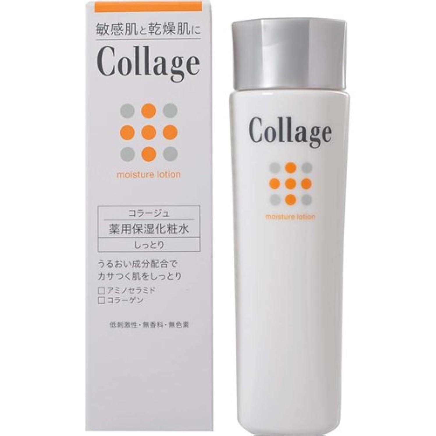 印象的なピカリング通訳コラージュ 薬用保湿化粧水 しっとり 120mL 【医薬部外品】