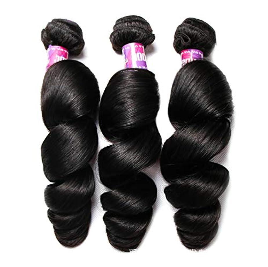 実証する歴史家扇動するブラジルのボディウェーブの毛100%Remyの人間の毛髪の織り方延長未処理のバージンのブラジルの毛(3束)