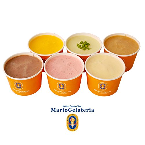 ジェラート専門店 マリオジェラテリア 【ミックスジェラートセット 6個入】 110ml 6種 アイスクリーム ギフト セット