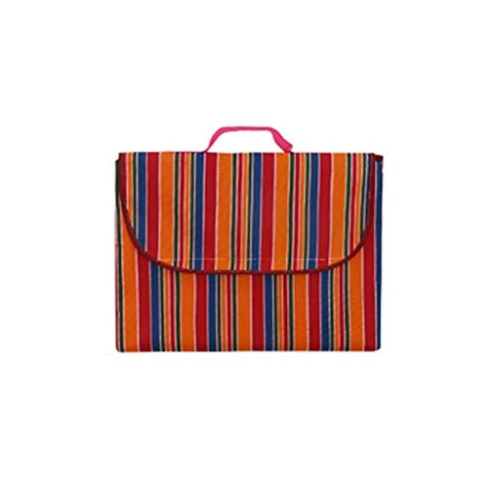 印象的な病弱アカデミックJucaiyuan ピクニック毛布、キャンプマット、屋外のビーチテントマット、ヨガマット、防水パッド入り芝生マットピクニック布 (色 : Light red stripes, Size : 200x145cm)