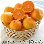 静岡 三ケ日 黒柳さんちの 三ケ日みかん 5kg