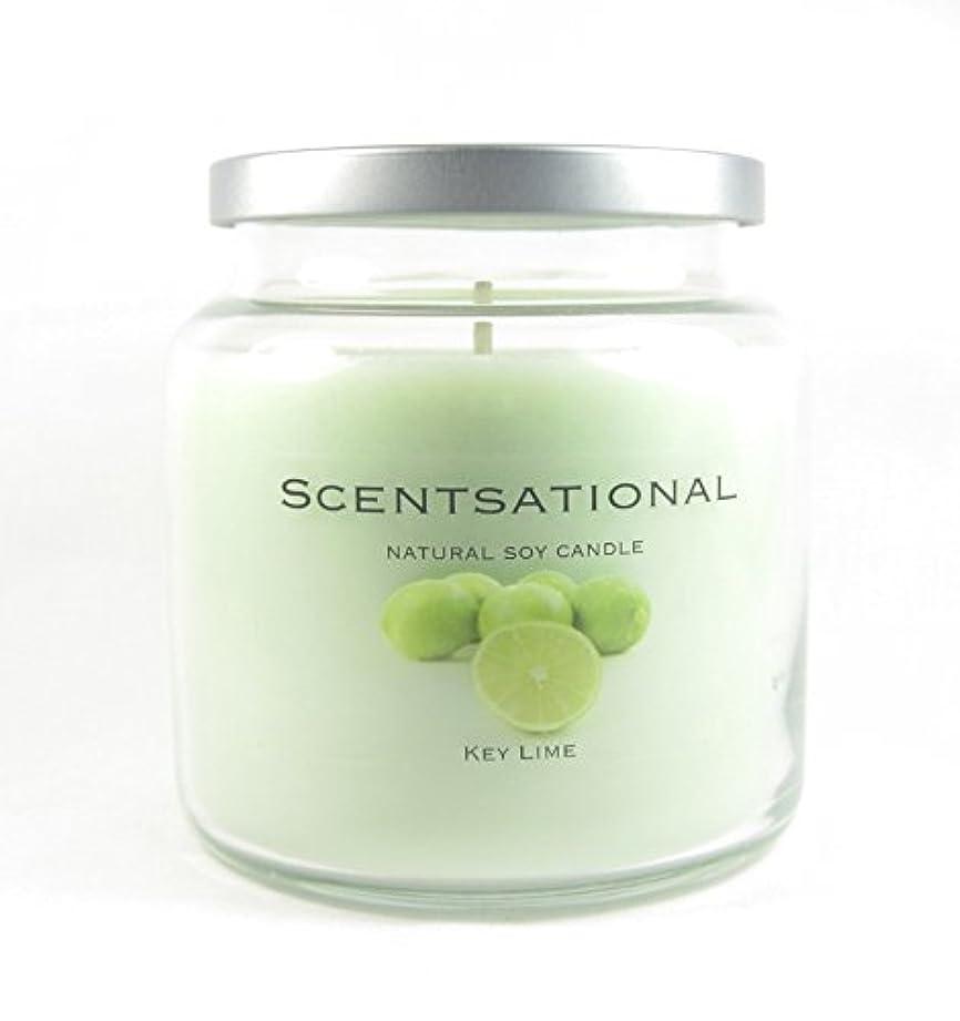 たぶんキルト価値Scentsational Soaps &キャンドル自然Soy Candleキーライム