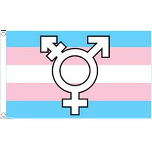 国旗 LGBT トランスジェンダー シンボル 特大フラッグ【ノーブランド品】