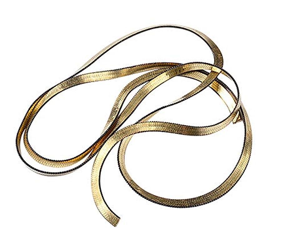 カヌー政治家の私たちTianmey ミックスネイルアートメタルチェーン3Dネイルアートデコレーションチャームパンク合金スタッドDIYネイルデザインマニキュアツールアクセサリー (Color : Snake bon)