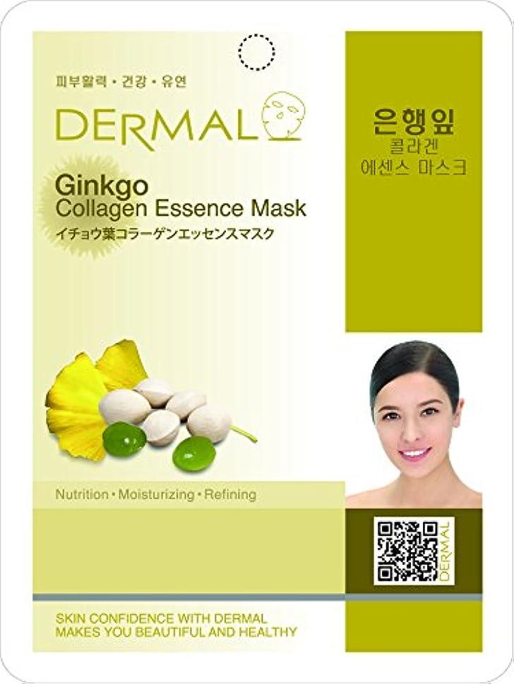 つかまえる分布高価な新商品!!イチョウ葉シートマスク(フェイスパック)  10枚セット ★韓国コスメ ダーマル(Dermal)★