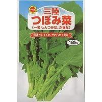 三陸 つぼみ菜 (656)